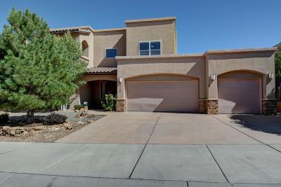 Albuquerque Single Family Home For Sale: 8115 Via Alegre NE