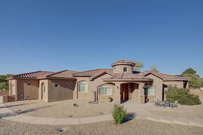 Albuquerque Single Family Home For Sale: 423 Cenaroca Ct. NE