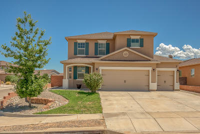Rio Rancho Single Family Home For Sale: 1906 Buckskin Loop NE