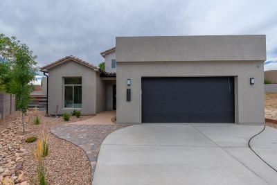 Bernalillo County Single Family Home For Sale: 6105 Little Joe Place NW