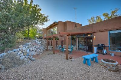 Placitas Single Family Home For Sale: 24 Freeform Way