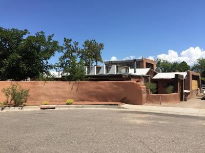 Albuquerque Single Family Home For Sale: 1924 Girard Boulevard