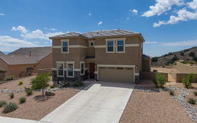 Rio Rancho Single Family Home For Sale: 2324 Desert View Road NE