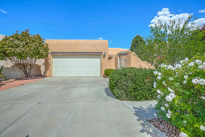 Bernalillo County Single Family Home For Sale: 4107 New Vistas Court NW