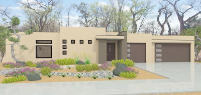 Albuquerque Single Family Home For Sale: 243 Vista Azul Lane NW