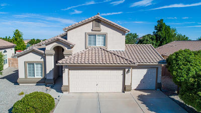 Single Family Home For Sale: 7261 Sidewinder Drive NE