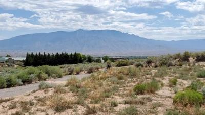 Rio Rancho Residential Lots & Land For Sale: 1541 Acapulco Road NE