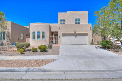 Albuquerque Single Family Home For Sale: 6105 Jamers Place NW
