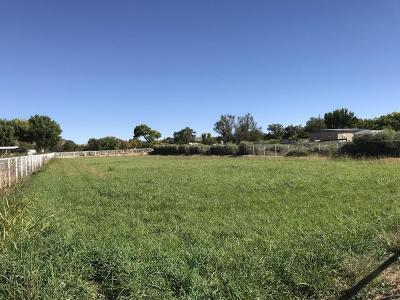 Valencia County Residential Lots & Land For Sale: 349 La Entrada Road