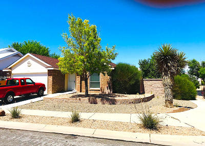Albuquerque Single Family Home For Sale: 8101 Edgebrook Place NW