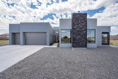 Albuquerque Single Family Home For Sale: 8011 Canoncito Drive