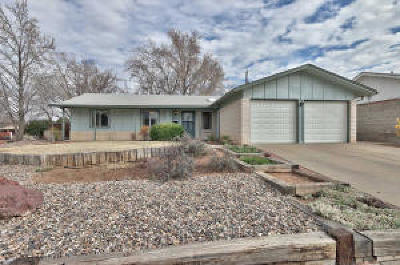 Albuquerque NM Single Family Home For Sale: $249,900