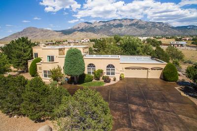 Albuquerque NM Single Family Home For Sale: $890,000