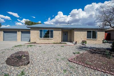 Valencia County Single Family Home For Sale: 90 Olson Street
