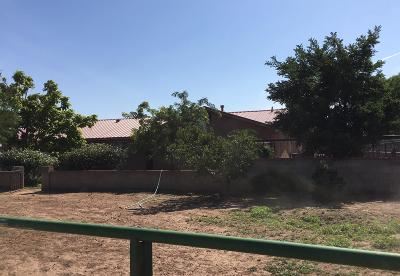 Los Lunas Single Family Home For Sale: 3257 State Highway 47