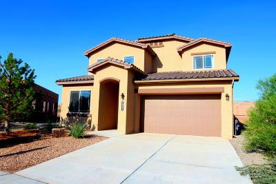 Rio Rancho Single Family Home For Sale: 7051 Wrangell Loop NE