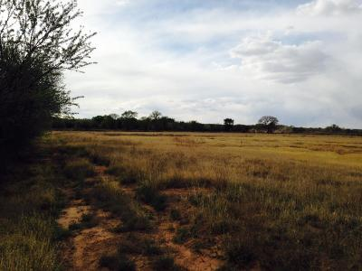 Valencia County Residential Lots & Land For Sale: 1596 Nm-304