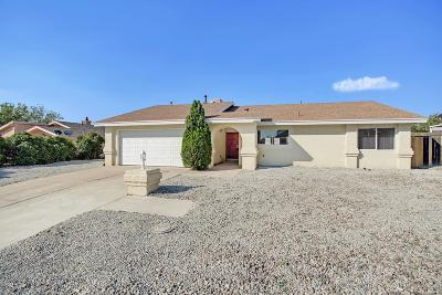 Rio Rancho Single Family Home For Sale: 2218 Western Hills Drive SE