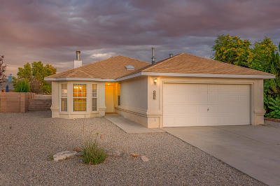 Rio Rancho Single Family Home For Sale: 4469 Snow Heights Circle SE