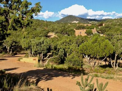 Santa Fe County Single Family Home For Sale: 86A Arroyo Hondo Road