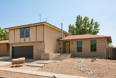 Albuquerque Single Family Home For Sale: 8928 Opportunity Drive NE