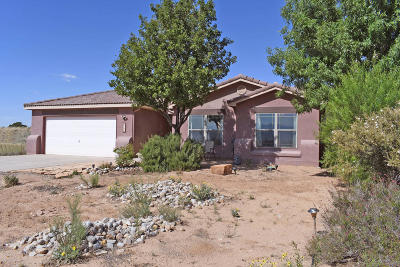 Rio Rancho Single Family Home For Sale: 317 4th Street NE