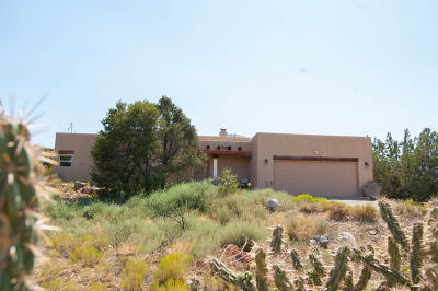Placitas Single Family Home For Sale: 58 Loma Chata Road