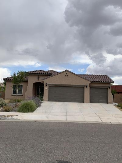 Rio Rancho Single Family Home For Sale: 725 Palo Alto Drive NE