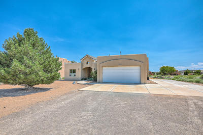 Rio Rancho Single Family Home For Sale: 1674 14th Avenue SE