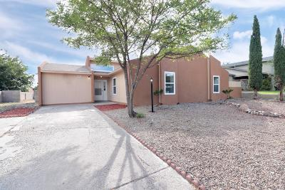 Rio Rancho Single Family Home For Sale: 537 Campfire Road SE