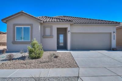 Albuquerque Single Family Home For Sale: 2004 Silver Dollar Street SE