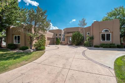 Albuquerque Single Family Home For Sale: 11500 Zinfandel Avenue NE