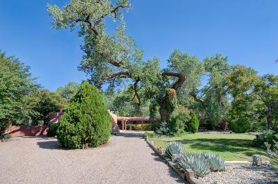 Los Ranchos Single Family Home For Sale: 509 Los Ranchos Road NW