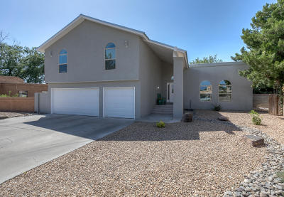 Albuquerque Single Family Home For Sale: 4000 Amy Kay Court NW
