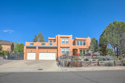 Albuquerque Single Family Home For Sale: 1700 Blair Drive NE