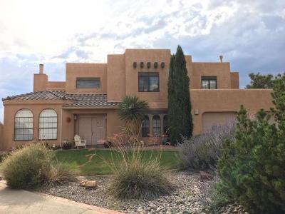 Albuquerque Single Family Home For Sale: 1405 Wells Drive NE