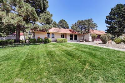 Albuquerque Single Family Home For Sale: 1305 Wagon Train Drive SE