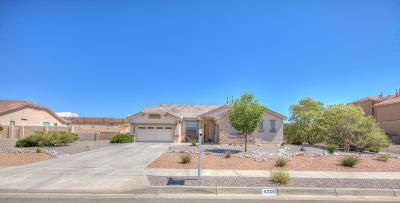 Rio Rancho Single Family Home For Sale: 4328 Bentgrass Meadow Drive NE