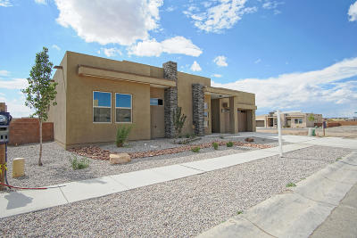 Albuquerque Single Family Home For Sale: 7923 Teaberry Road NW