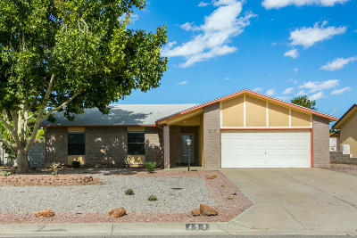 Rio Rancho Single Family Home For Sale: 459 Western Hills Drive SE