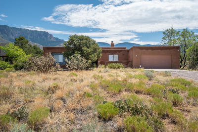 Sandia Heights Single Family Home For Sale: 917 Tramway Lane NE