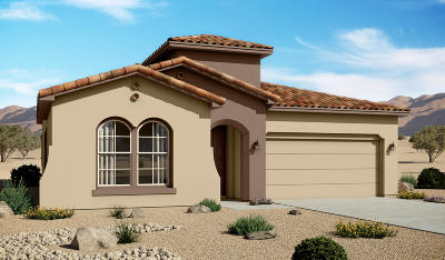 Rio Rancho Single Family Home For Sale: 4125 Mountain Trail Loop
