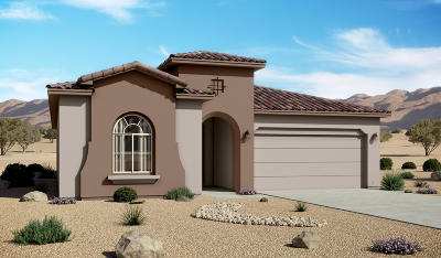 Rio Rancho Single Family Home For Sale: 4133 Mountain Trail Loop