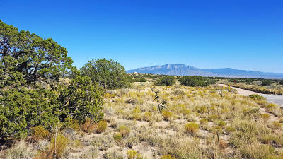 Rio Rancho Residential Lots & Land For Sale: 3009 Mineola Road NE