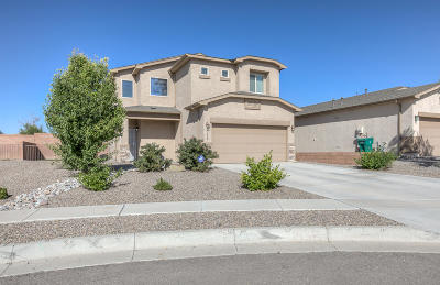 Rio Rancho Single Family Home For Sale: 1435 Blue Sky Loop NE