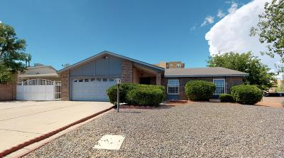 Rio Rancho Single Family Home For Sale: 901 Riva Court NE