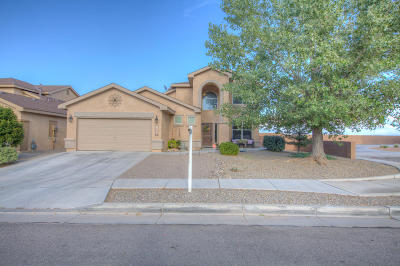 Albuquerque Single Family Home For Sale: 10200 Ventana Sol Drive NW