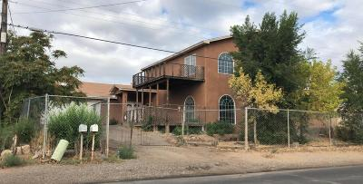 Albuquerque Single Family Home For Sale: 2125 Foothill Drive SW