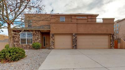 Rio Rancho Single Family Home For Sale: 5036 Night Hawk Drive NE