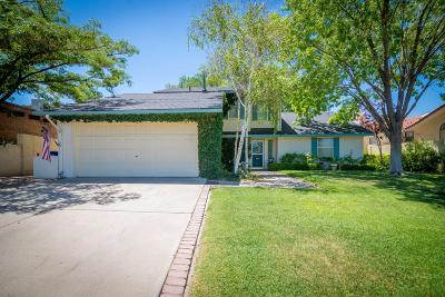Albuquerque Single Family Home For Sale: 910 Matador Avenue SE